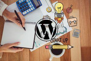 Pourquoi faire appel à un professionnel spécialisé WordPress